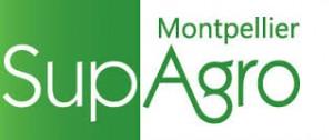 Montpellier SupAgro Mas Numérique